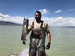 Anglers need to report, release tagged northern pike caught in Utah Lake