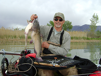 Utah Lake Catfish