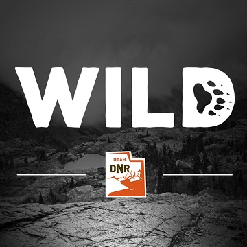 Introducing WILD - A Utah Division of Wildlife Resources podcast