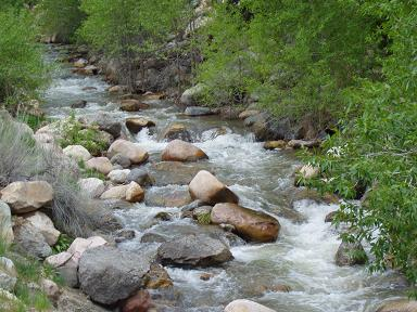Peteetneet Creek (Payson Canyon)